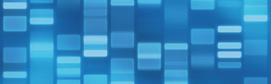 细胞因子小笔记之VEGF