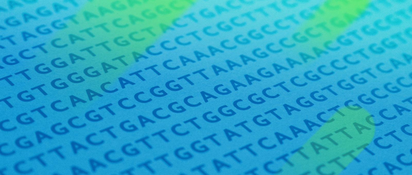 结核分枝杆菌全基因组测序